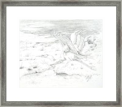 Flight Of Grace Framed Print