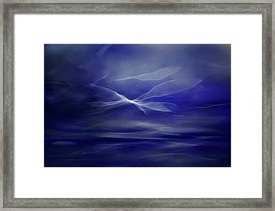 Flight Of The Fairies Framed Print