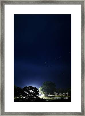 Flight Of The Firefly Framed Print by Thomas R Fletcher