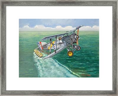Flight Of The Flycatcher 2 Framed Print by Murray McLeod