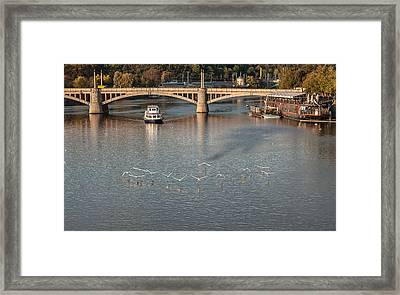 Flight Over Water Framed Print