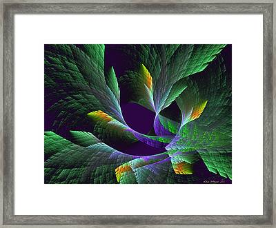 Flights Of Fancy Vii Birds Of Paradise Framed Print