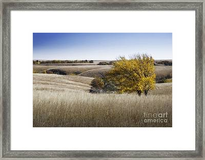 Flint Hills Autumn 013 Framed Print by Fred Lassmann