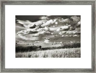 Flint Hills Prairie Framed Print by Thomas Bomstad