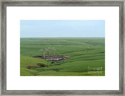 Flint Hills Ranch Framed Print