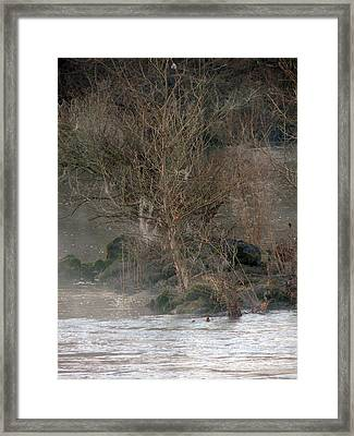 Flint River 19 Framed Print