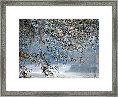 Flint River 29 Framed Print