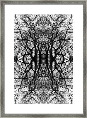 Tree No. 11 Framed Print