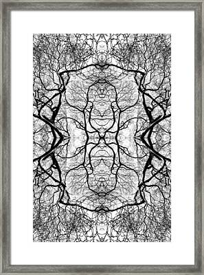 Tree No. 5 Framed Print