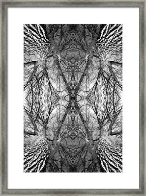 Tree No. 7 Framed Print