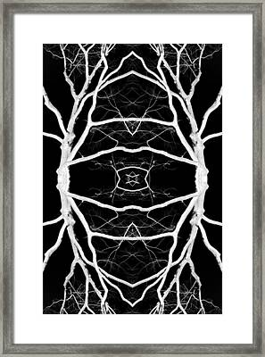 Tree No. 8 Framed Print