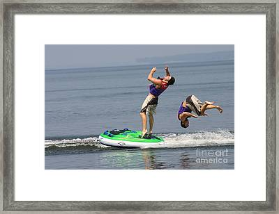 Flipper Framed Print