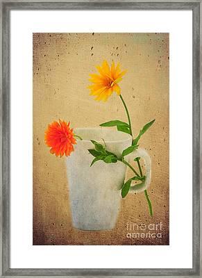 Flirt Framed Print