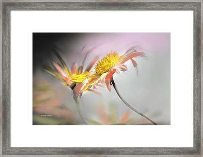 Flirteo Framed Print by Alfonso Garcia