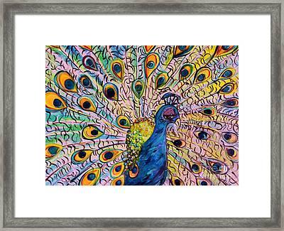 Flirty Peacock Framed Print