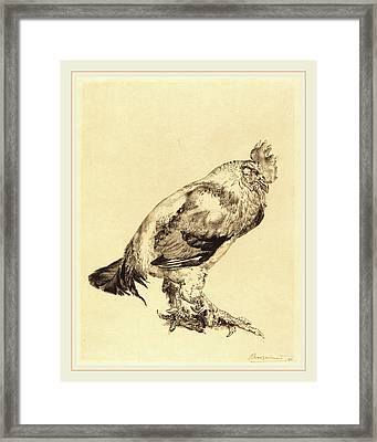Félix Bracquemond French, 1833-1914, The Old Cock Framed Print by Litz Collection
