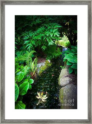 Floating Away Framed Print by Inge Johnsson