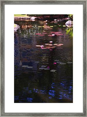 Floating Flowers  Framed Print