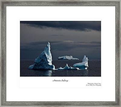 Floating Giants Framed Print by David Barringhaus