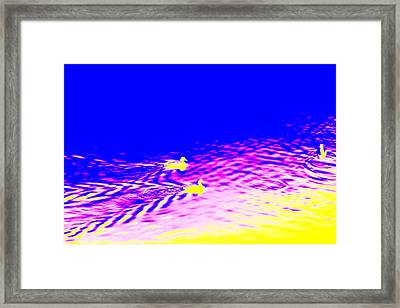 Yellow Birds Are Floating Into The Blue  Framed Print by Hilde Widerberg