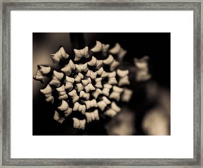 Floating Into The Dark II Framed Print