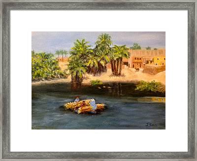 Floating On The Nile Framed Print