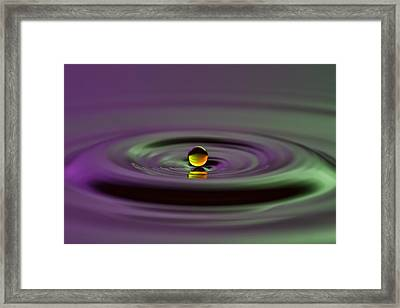 Floating On Water Framed Print