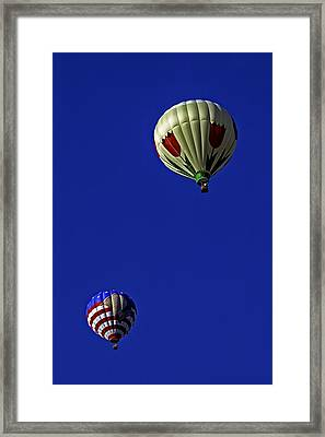 Floating Pair Framed Print by Andy Crawford