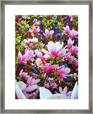 'floating Petals' Framed Print