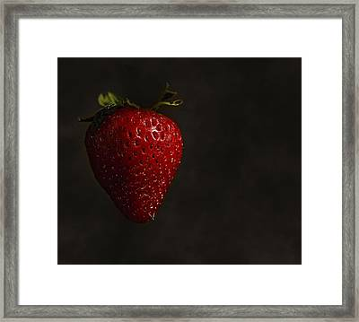 Floating Strawberry Framed Print by Tim Hayes