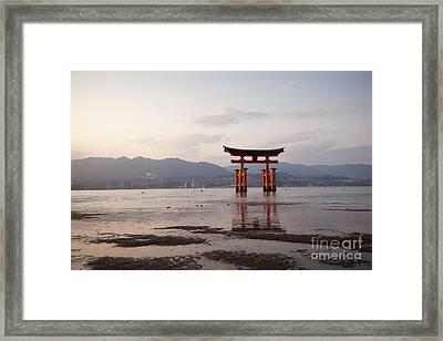 Floating Torii Gate Of Itsukushima Miyajima Framed Print