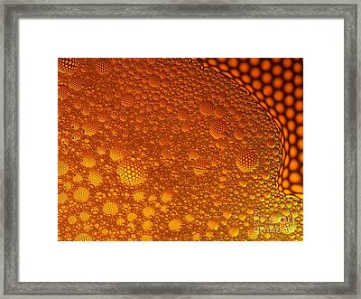 Framed Print featuring the photograph Floating by Trena Mara