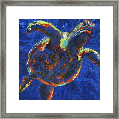Floating Turtle Framed Print by Lovejoy Creations