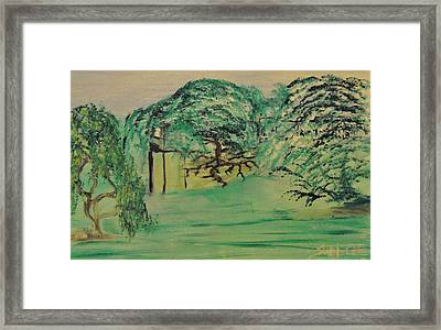 Floating Wonders Framed Print by Suzanne Surber
