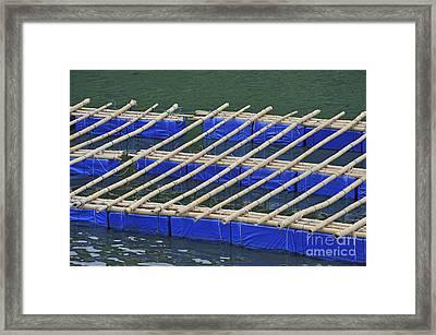 Floatting Nets Framed Print by Sami Sarkis