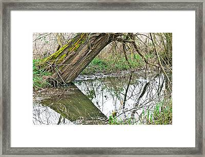 Flood Damage Framed Print by Tom Gowanlock