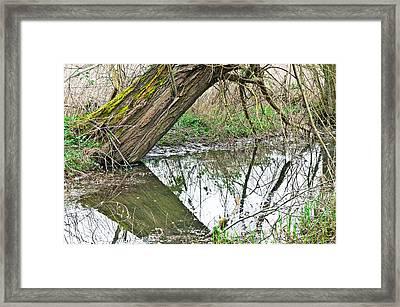 Flood Damage Framed Print by Tom Gowanlock