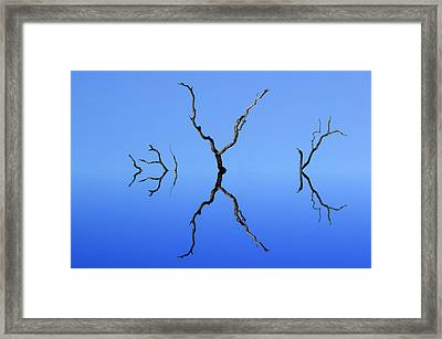 Flood Plain Isolation Framed Print
