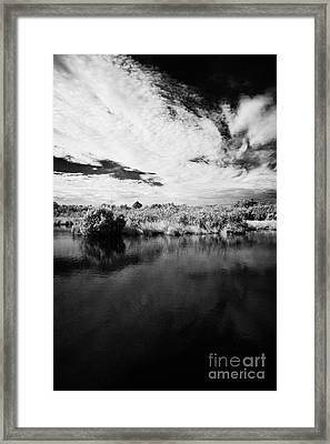 Flooded Grasslands And Mangrove Forest In The Florida Everglades Framed Print by Joe Fox