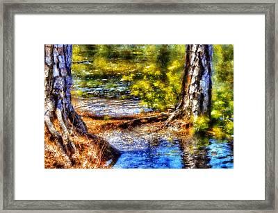 Flooded Roots Framed Print by Daniel Eskridge