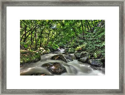 Framed Print featuring the photograph Flooded Small Stream  by Dan Friend