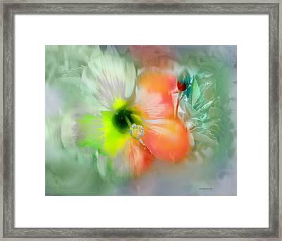 Flor De Ayamonte Framed Print