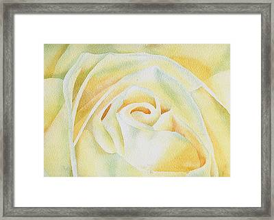 Flor De Merengue Framed Print by Thomas Habermann