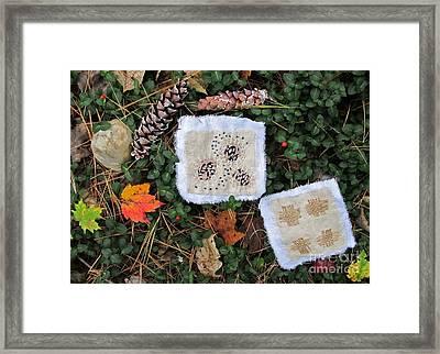Flora And Fiber Framed Print by Linda Marcille