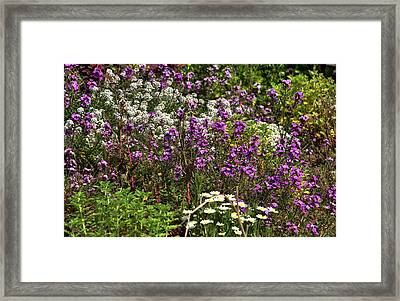 Flora Framed Print by Svetlana Sewell