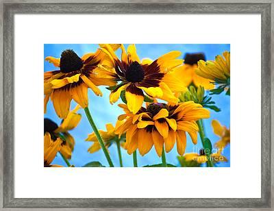 Floral 1 Framed Print