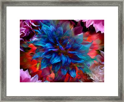 Floral Abstract Color Explosion Framed Print by Stuart Turnbull
