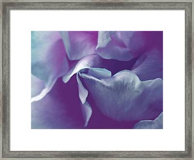 Abstract Blue Purple Green White Flowers Art Work Photography Framed Print by Artecco Fine Art Photography