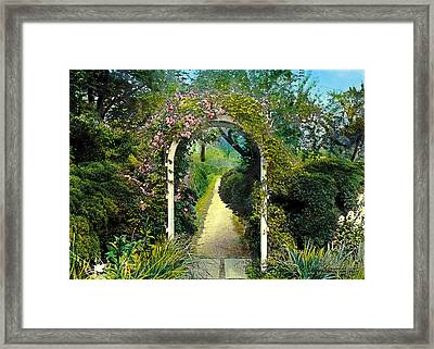 Floral Arch And Path Framed Print