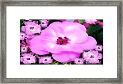 Floral Arrangement Framed Print by Catherine Lott